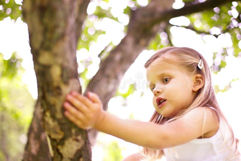 Het meisje zit op boom stock foto