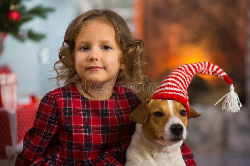 Het meisjeskind viert Kerstmis met hond Jack Russell Terrier bij royalty-vrije stock afbeelding