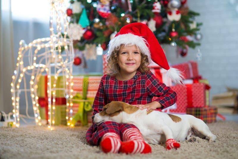 Het meisjeskind viert Kerstmis met hond Jack Russell Terrier bij stock foto's