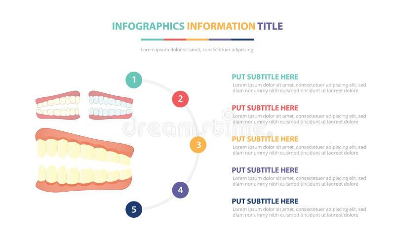 Het menselijke concept van het de structuur infographic malplaatje van de tandentand met vijf punten maakt van en diverse kleur m vector illustratie
