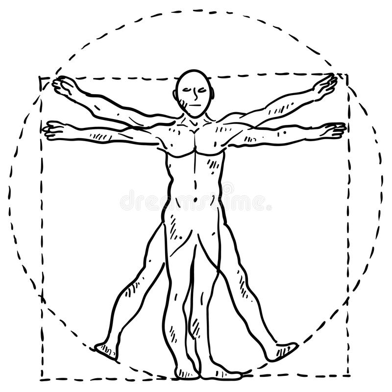 Het menselijke lichaamsschets van DA Vinci vector illustratie