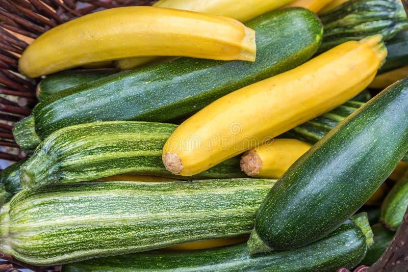 Het merg van de courgettescourgette in gezonnebaad vers geplukt op een dag van de landbouwersmarkt Levendig groen en geel kleuren stock foto