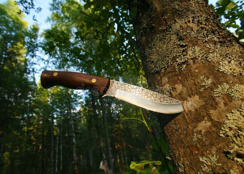 Het mes van de jacht in boomboomstam royalty-vrije stock foto