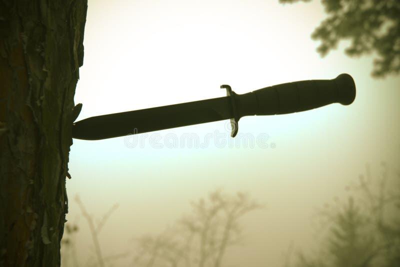 Het mes van het gevecht in boom stock afbeelding