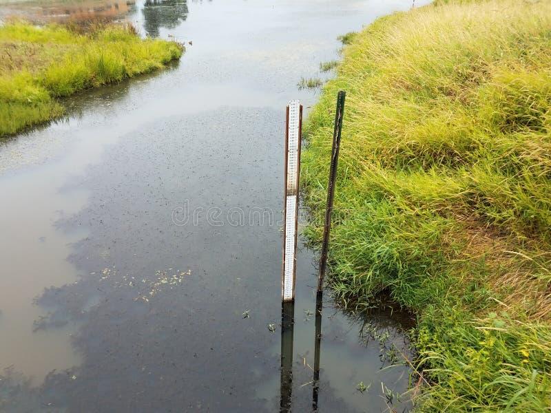 Het meten van stok of maat van diepte van water en groene grassen stock foto
