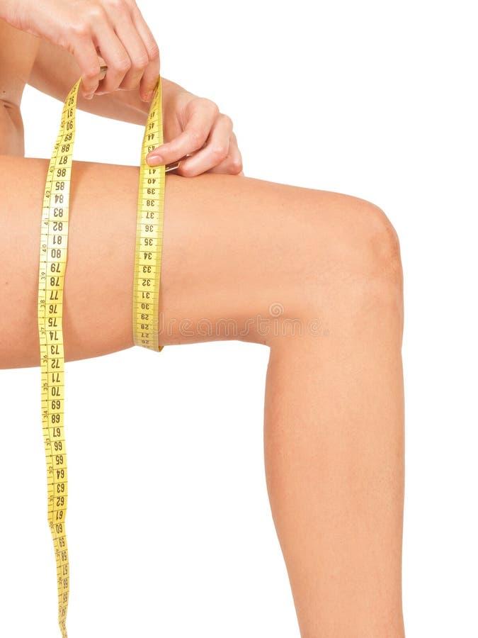 Het meten van vrouwen` s been stock afbeelding