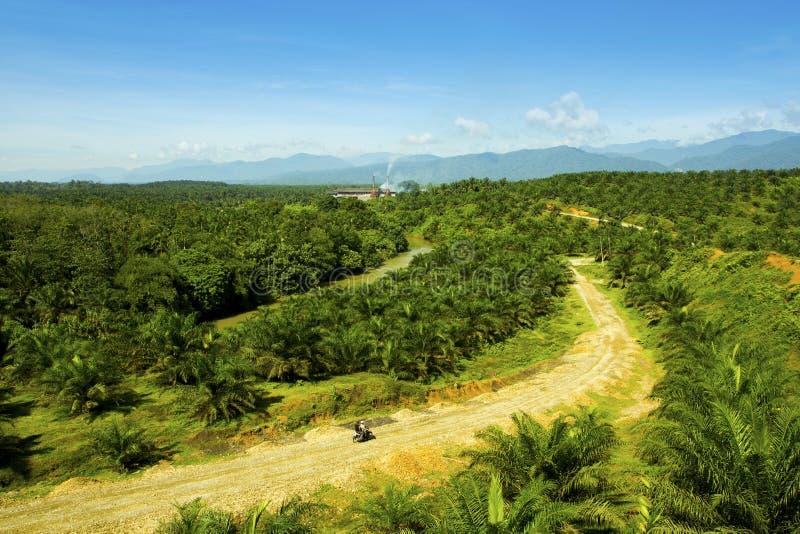 In het midden van de aard een palmoliefabriek in Sumatra Indonesië royalty-vrije stock foto