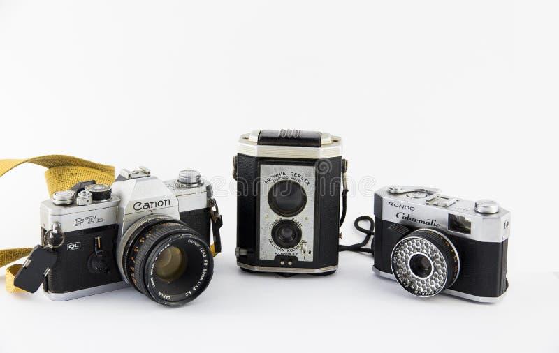 Het model van browniesyncro royalty-vrije stock fotografie