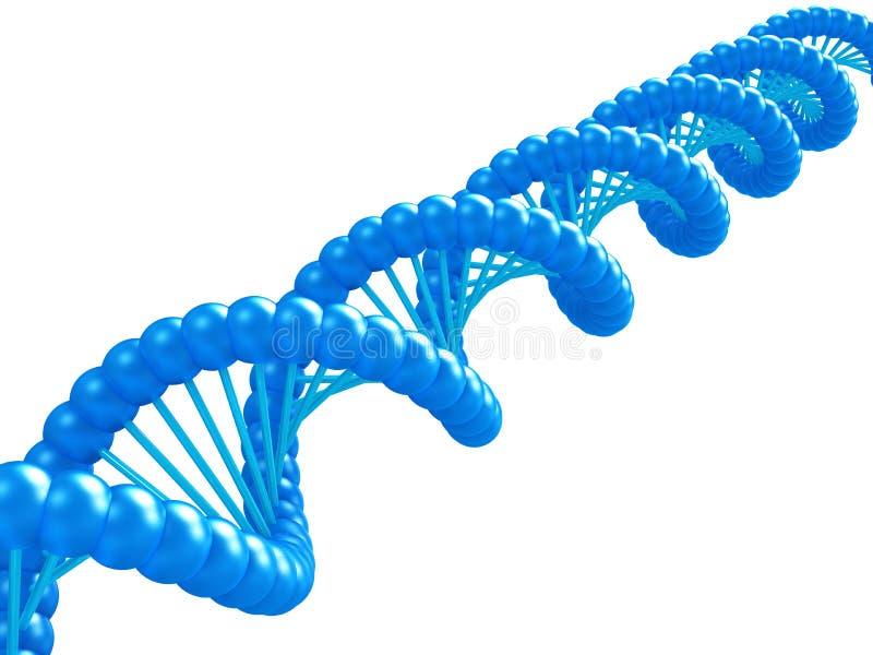 Het model van DNA. stock illustratie