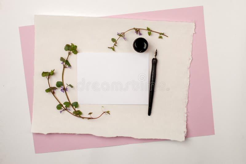 Het model van het Witboekblad op roze pastelkleurachtergrond met kalligrafiebonen en inkt Voor uitnodiging, huwelijk, decoratie royalty-vrije stock foto's