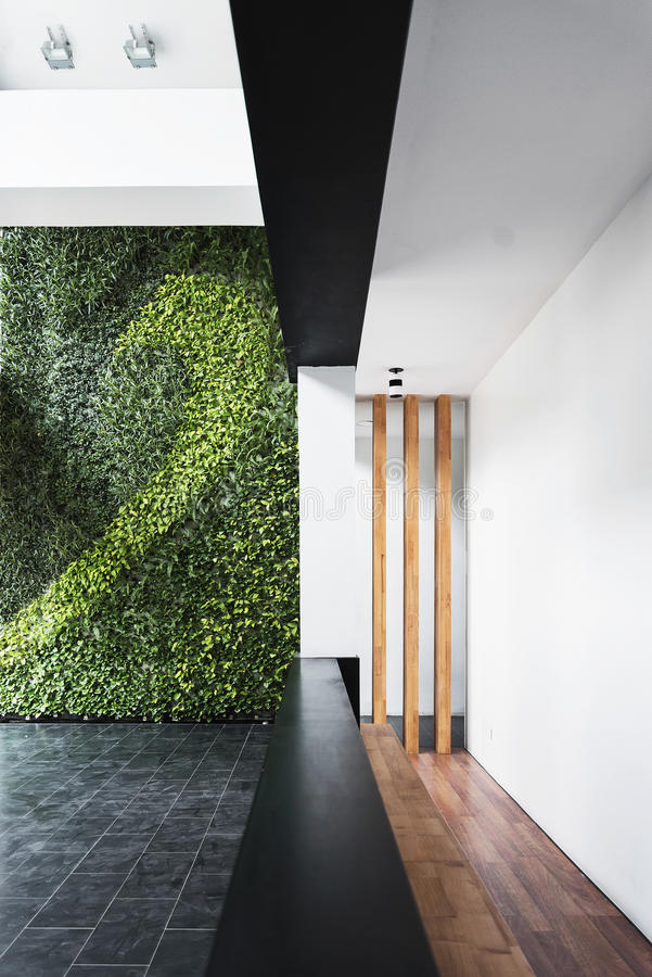 Het moderne binnenland van de architectuur minimale stijl met verticale tuin stock foto