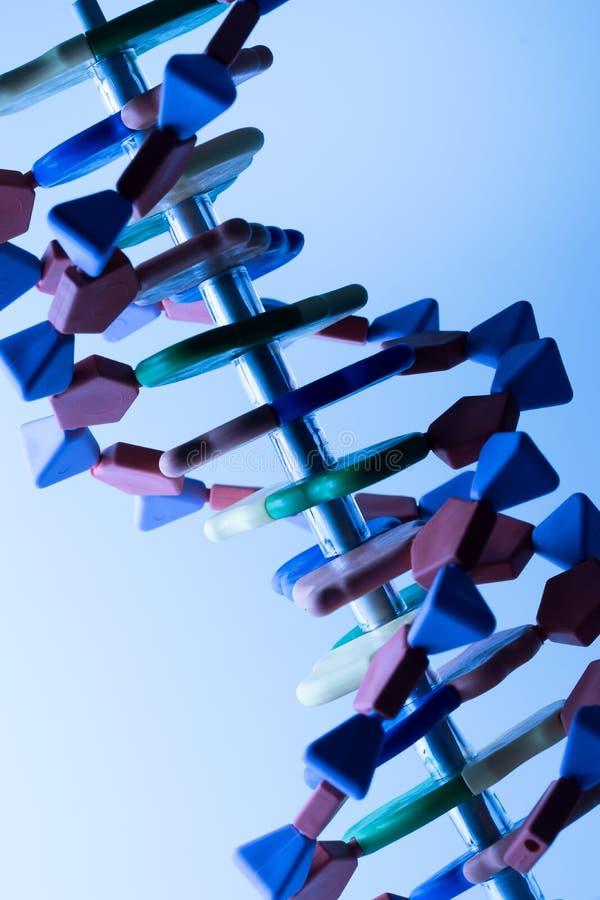 Het moleculaire, model van DNA en van het atoom in het laboratorium van het wetenschapsonderzoek royalty-vrije stock afbeelding