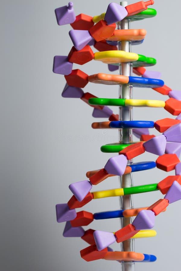 Het moleculaire, model van DNA en van het atoom in het laboratorium van het wetenschapsonderzoek stock afbeeldingen