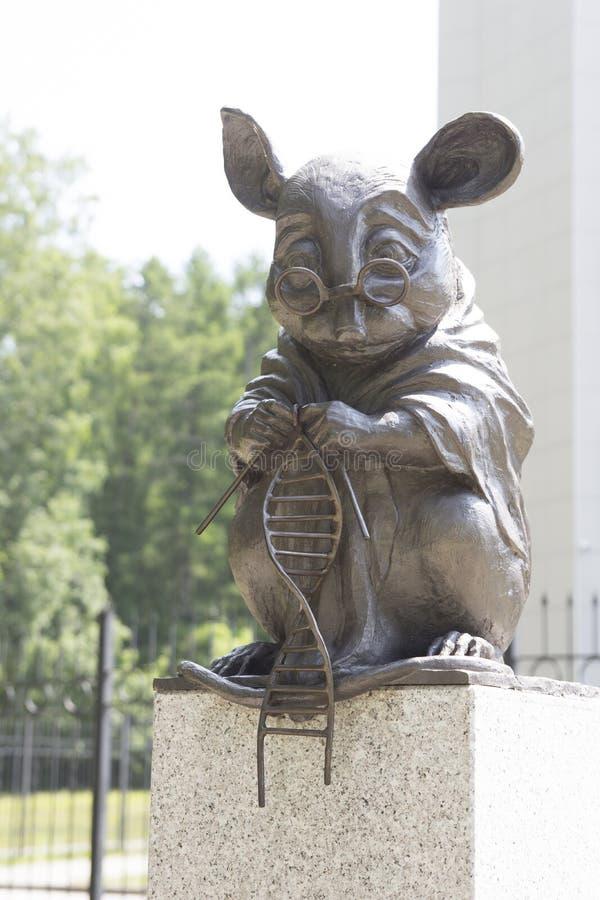 Het monument aan de laboratoriummuis is een beeldhouwwerk in de stad van Novosibirsk in Siberië, Rusland Het wordt gevestigd in e royalty-vrije stock foto's