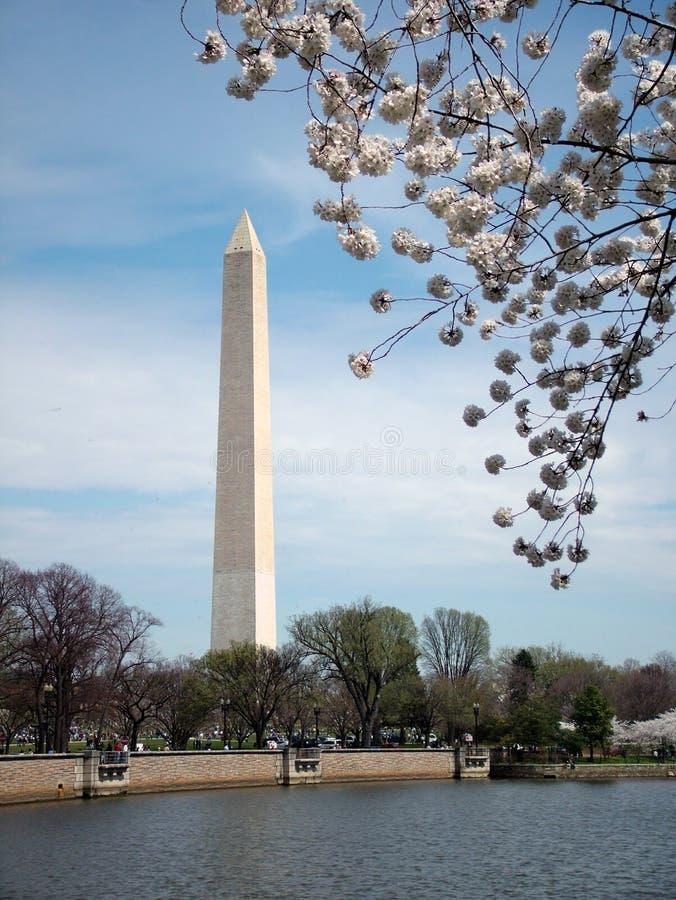 Het Monument van Washington stock foto's
