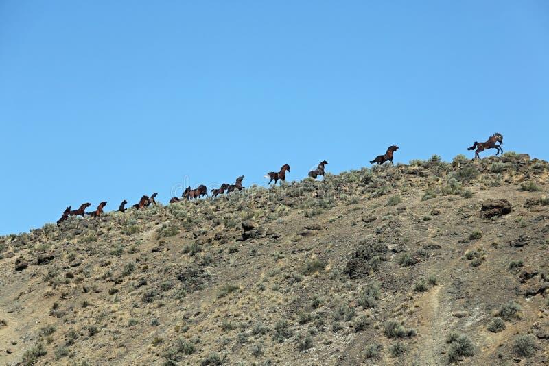 Het Monument van wild paarden stock afbeelding