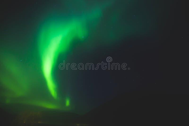Het mooie beeld van massieve multicolored groene trillende Aurora Borealis, Aurora Polaris, kent ook als Noordelijke Lichten in N stock foto's