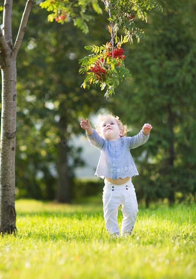 Het mooie blonde krullende babymeisje spelen in een zonnig de herfstpark royalty-vrije stock foto