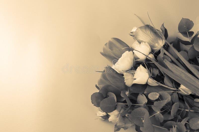 Het mooie boeket van tulpen en dichtbegroeid weinig geel nam op roze achtergrond toe, leg vlak met exemplaarruimte, Sepia Effect stock fotografie