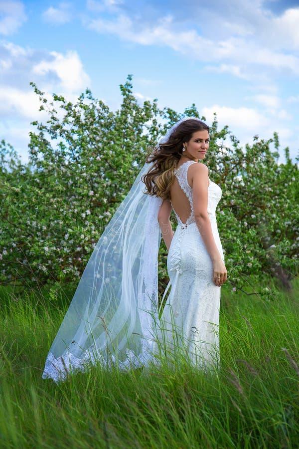Het mooie bruid stellen dichtbij bloeiende appelboom royalty-vrije stock foto