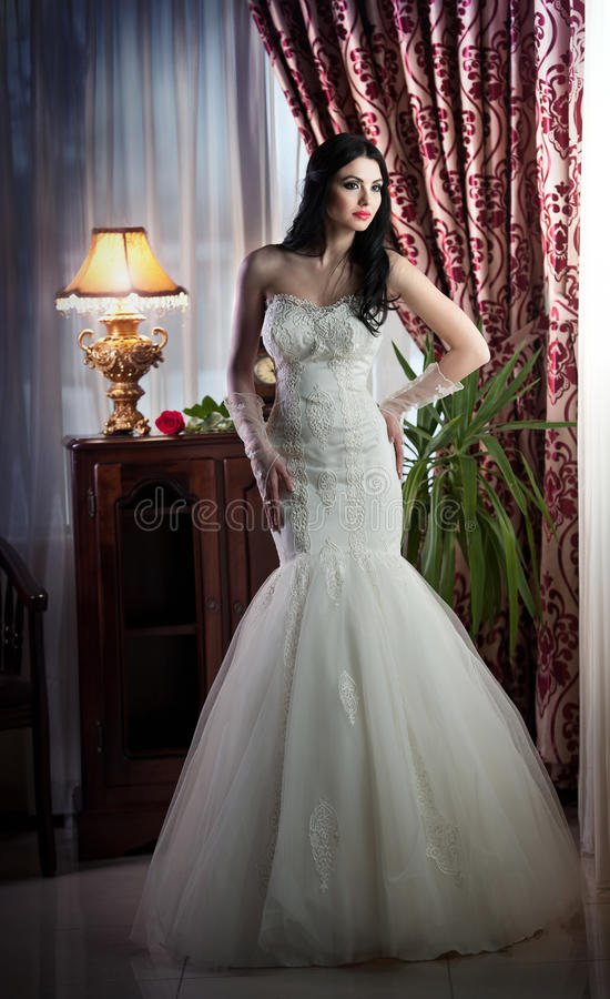 Het mooie bruid stellen in klassiek landschap stock fotografie