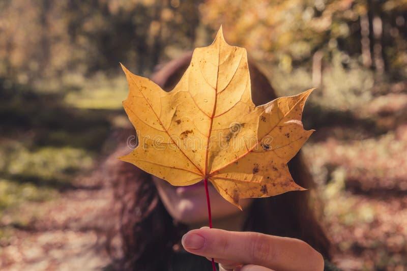 Het mooie donkerbruine meisje behandelt haar gezicht met de rode oranje herfst l stock foto