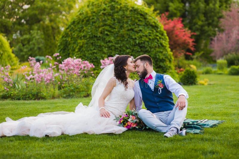 Het mooie echtpaar kussen op het gras stock foto's