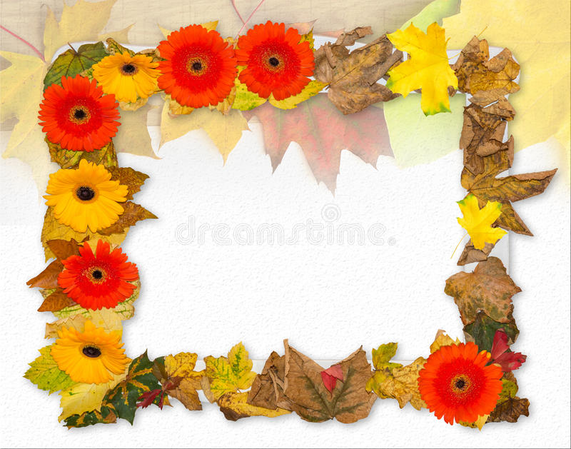 Het mooie frame van de Herfst Bladeren over hout stock afbeeldingen
