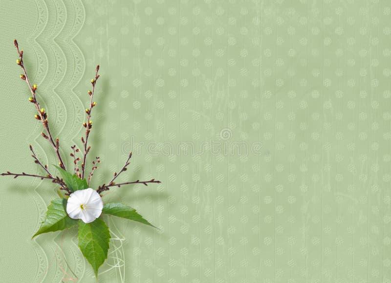 Het mooie gevoelige boeket van winde en het bloeien vertakt zich met linten en bogen in de stijl van plakboek stock illustratie