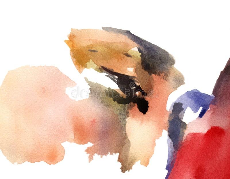 Het mooie gezicht van meisjesogen Vector illustratie vector illustratie