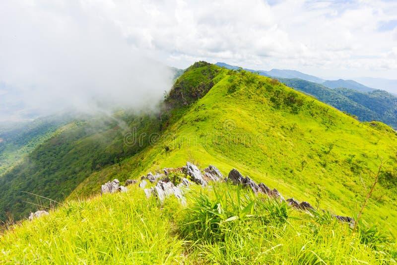 Het mooie gezichtspunt van het bergenlandschap in Doi Pha Tang dichtbij Chiang Rai, het Noorden van Thailand royalty-vrije stock afbeelding