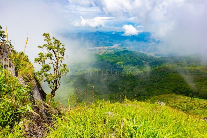 Het mooie gezichtspunt van het bergenlandschap in Doi Pha Tang dichtbij Chiang Rai, het Noorden van Thailand royalty-vrije stock fotografie