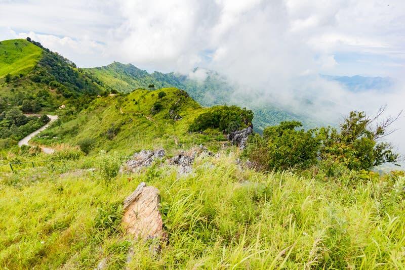 Het mooie gezichtspunt van het bergenlandschap in Doi Pha Tang dichtbij Chiang Rai, het Noorden van Thailand stock fotografie