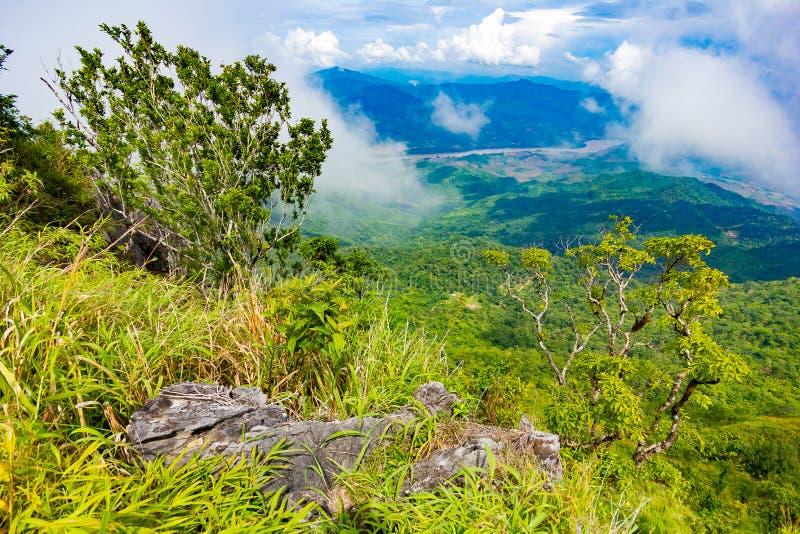 Het mooie gezichtspunt van het bergenlandschap in Doi Pha Tang dichtbij Chiang Rai, het Noorden van Thailand stock afbeeldingen