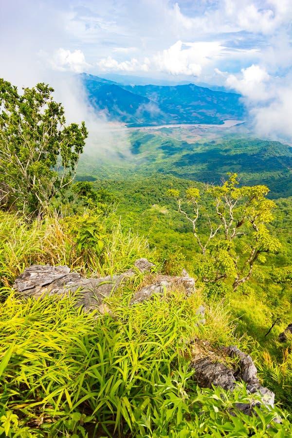Het mooie gezichtspunt van het bergenlandschap in Doi Pha Tang dichtbij Chiang Rai, het Noorden van Thailand stock afbeelding
