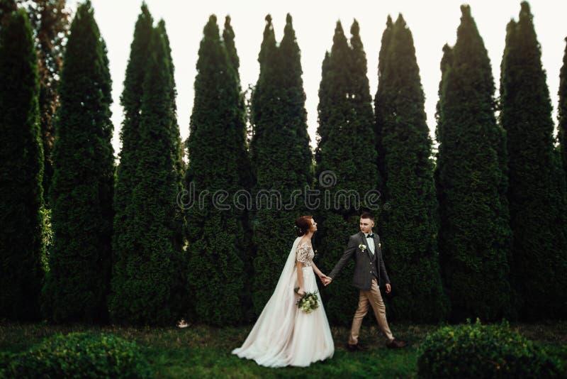 Het mooie huwelijkspaar stelt in een groene de lentetuin stock foto's