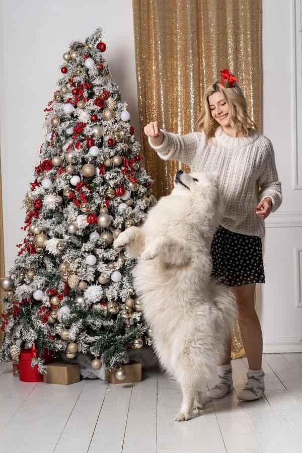 Het mooie jonge blondemeisje spelen met hond dichtbij Kerstmisboom stock foto's