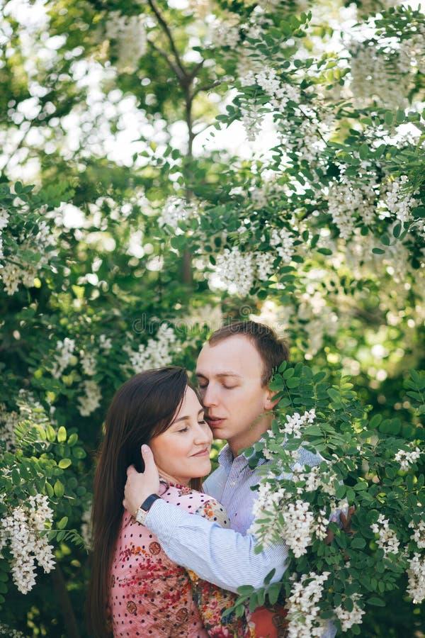 Het mooie jonge paar zacht in groene bladeren koesteren en de witte bloemen die in de lente tuinieren in zonneschijn Gelukkige fa royalty-vrije stock afbeelding
