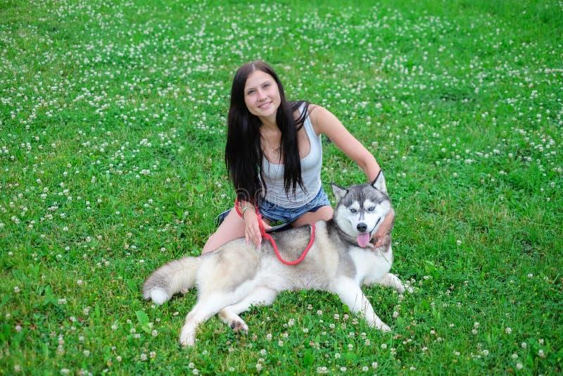 Het mooie jonge vrouw spelen met grappige schor hond in openlucht bij park stock afbeelding