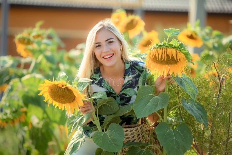 Het mooie jonge vrouw stellen dichtbij zonbloemen de zomerportret bij het gebied Gelukkige vrouw op schoonheidsgebied met zonnebl royalty-vrije stock afbeeldingen