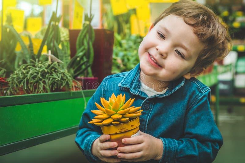 Het mooie jongen spelen met installatie succulents in de detailhandel Het tuinieren in Serre royalty-vrije stock fotografie
