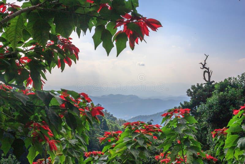 Het mooie landschap met blauwe en mistige mountaines strekt zich in noordelijk Thailand, Chiang Mai-provincie voor natuurlijk uit stock afbeeldingen