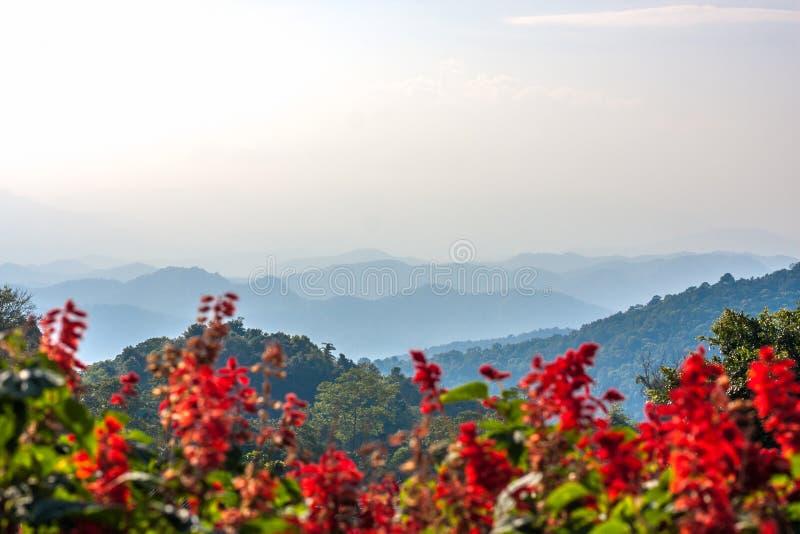 Het mooie landschap met blauwe en mistige mountaines strekt zich in noordelijk Thailand, Chiang Mai-provincie voor natuurlijk uit stock afbeelding