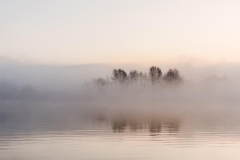 Het mooie landschap van de Mistwinter bij meer met boom stock foto's