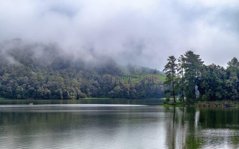 Het mooie landschap van reusachtig meer, met bomen, en de mist leiden het kalmeren tot atmosfeer royalty-vrije stock foto's