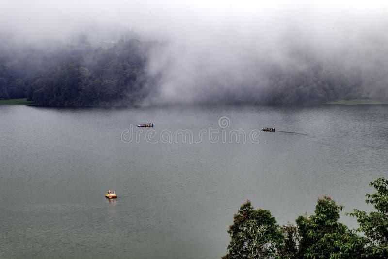 Het mooie landschap van reusachtig meer, met bomen, en de mist leiden het kalmeren tot atmosfeer stock afbeeldingen