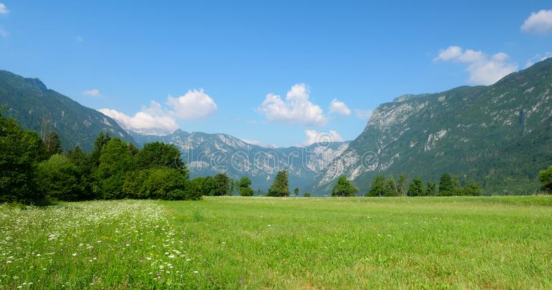 Het mooie landschap van Slovenië stock foto