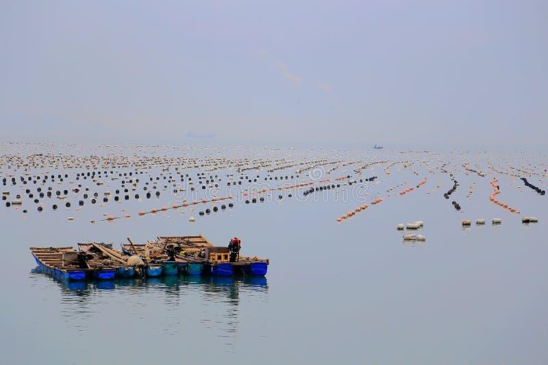 Het mooie landschap van het strand in het eiland van shantounanao, Guangdong, China stock foto's