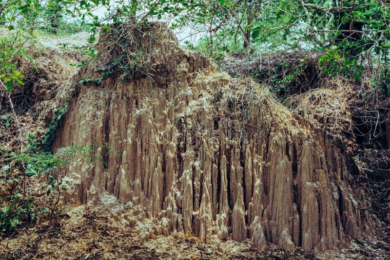 Het mooie Landschap van Waterstromen door de grond heeft erosie en instorting van de grond in een natuurlijke laag in Pong Yub, stock afbeelding