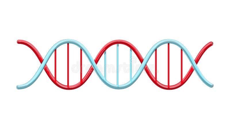 Het mooie medische rode en blauwe wetenschappelijke verdraaide abstracte model van de schroefstructuur van DNA-genen op een witte stock illustratie